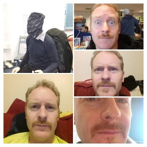 Ross Movember collage